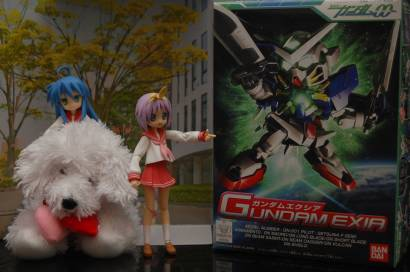 Ok ignore the Gundam and the fact that Konata is sitting on a plush version of my dog. But this week sure had some nice items!