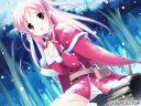 Shirokuma_Bell_Stars_CG