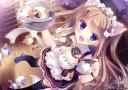 Nyan_Cafe_Macchiato_CG